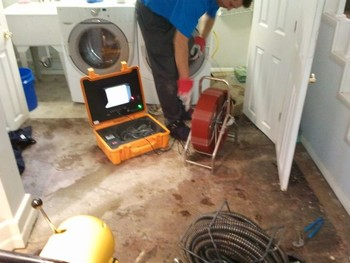 Tree roots caused sewer backup - Sewer Rodding & Repair in Chicago, IL